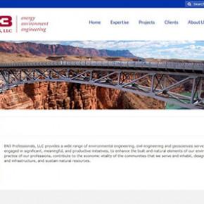 EN3 Professionals, LLC